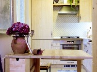 Vstup do kuchynky lemuje