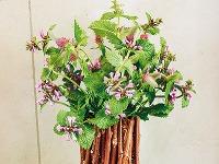 Vprípade vázy, ktorá pôsobí