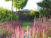 V záhrade vzniklo viacero