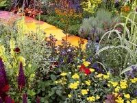 Cvijeće oko kuće  - Page 5 Zahrada-kvety-chodnik-md0906_152