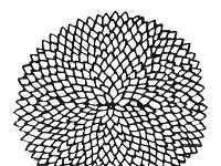 V tvare kvetu od