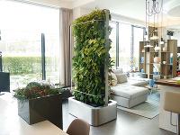 Premýšľate nad rastlinným závesom?