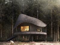 Drevený dom s unikátne