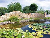 Vhodne vysadené okolie jazierka