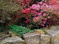 Svahovitá záhrada nie je