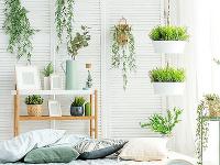 Inšpirácia do interiéru: Kvetináč ako štýlový doplnok