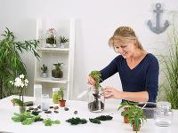 Pri výbere rastlín popustíme