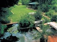 Kúpací rybník, archív redakcie