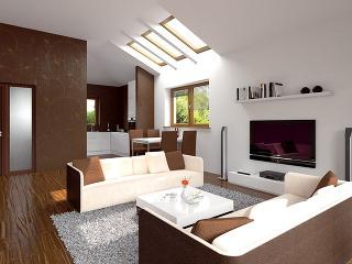Situácia so strešnými oknami: Cez tri strešné okná preniká denné svetlo priamo do otvorenej spoločenskej časti domu. Denné svetlo prestupujúce cez okná vo fasáde spolu so svetlom zo strešných okien rovnomerne osvetľuje celý priestor.