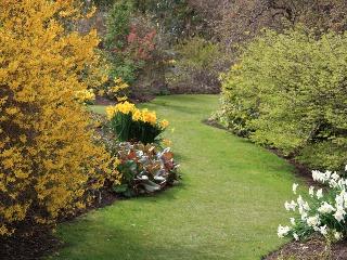Živý plot z rododendronov Nepáčia