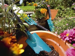 Pre balkónových záhradníkov