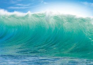 Premiär, obraz vlny Havaj,
