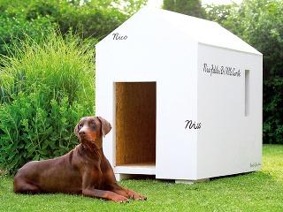Originálny domček pre psa