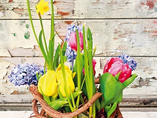 váza plná jari