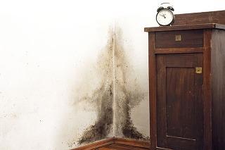 Nábytok pritisnutý kobvodovej stene bráni teplému vzduchu, aby ohrieval múr, atak vytvára za sebou tieň, kde sa začnú zrážať pary avlhnúť murivo. Tak sa rodí plesnivá škvrna, ktorú zvyčajne odhalí až zápach.