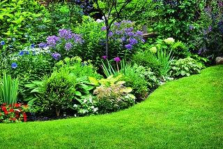 Aby vaša záhrada na
