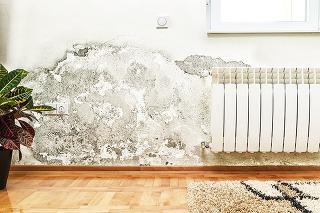 Vlhkosť v murive sa na povrchu stien prejaví vo forme viditeľných máp, vydúvaním a opadávaním omietky či rastom plesní. Pri vzlínaní vody z podložia vytvárajú soli obsiahnuté vo vode na omietke soľné výkvety.