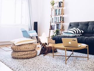 Rozkladacia pohovka v obývačke je nielen veľmi štýlovým, ale aj praktickým kúskom nábytku