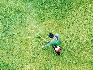 Pre malé záhrady je zbytočné kupovať prehnane výkonnú kosačku. Bude drahá anaplno ju nevyužijete. Skúste vziať do úvahy, aká je plocha vašej záhrady atomu výber prispôsobte.Záhrady do cca 400 až 500 metrov štvorcových ľahko pokosíte aj selektrickou ko