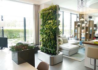 Premýšľate nad rastlinným závesom? Skúste si zadovážiť pojazdný obojstranný paraván plný zelene. Nájdete na www.carokvety.cz