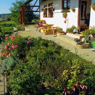 Ideálnym miestom na bylinkový záhon je slnečné miesto blízko kuchyne.