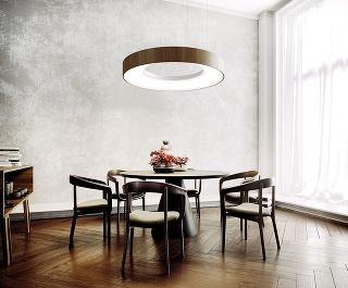 Veľkoplošné stropné LED svietidlá sú modernou alternatívou ku klasickému osvetleniu. Vlastná konštrukcia ich umožňuje inštalovať aj do zariadených priestorov ado interiéru prinášajú svetlo ako zoblohy. Novinkou značky www.svetelnestropy.sk je elegantný