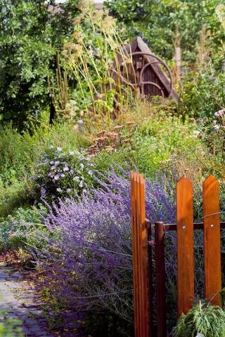 Záhrada pre všetky zmysly: