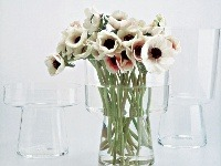 Váza No Base II