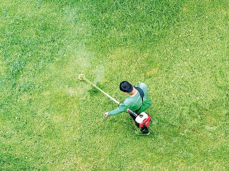 Pre malé záhrady je