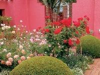 Apríl v záhrade