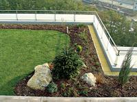 Zelená strecha cena