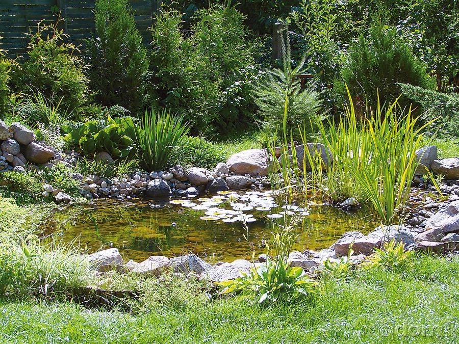 Z hradn jazierko je o iven m ka dej z hrady ako for Natural pond edging ideas