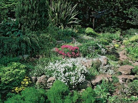 Vhodné na bujnenie rastlín