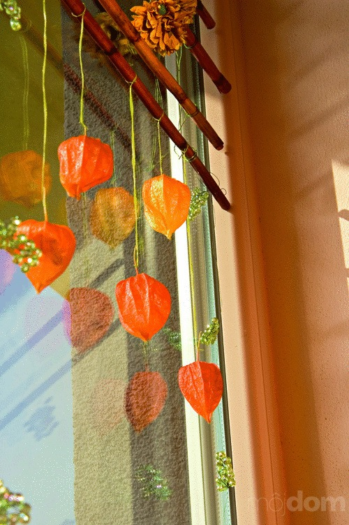 """Okná """"zajesené"""" plodmi ukrytými"""