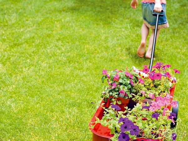 Záhrada VAPRÍLI