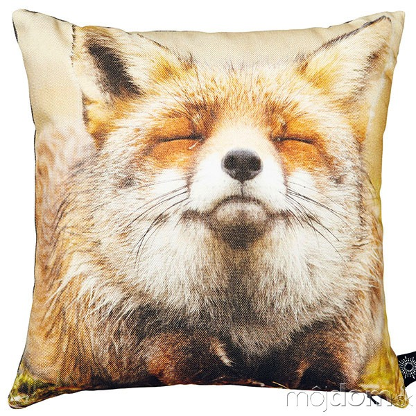 Happy fox (šťastná líška),