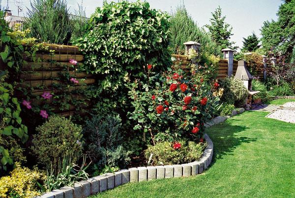 Cvijeće oko kuće  - Page 7 Zahrada-kvety-zelen-md0801_120