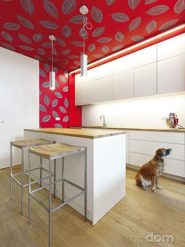 Kuchyňa má čistý, minimalistický