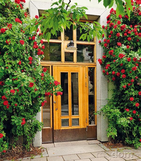 Bežné dvere majú výšku