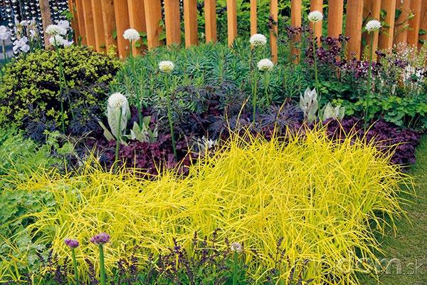 Len málo okrasných rastlín