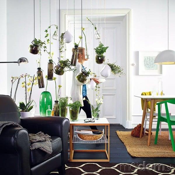 Živé steny. Vázy ačrepníky