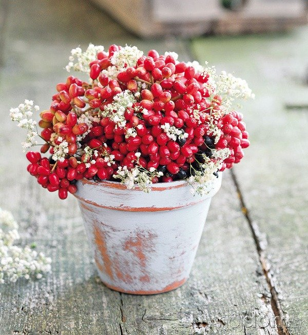 Kvetináč môžete natrieť aj