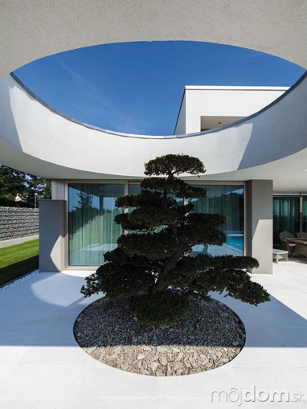 Dom so stromom. Namiesto