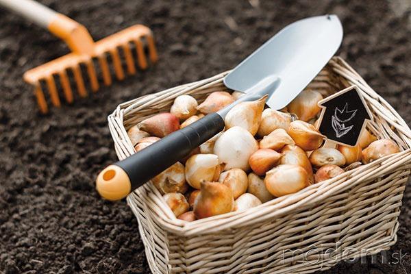 Záhradníctva sa na jeseň