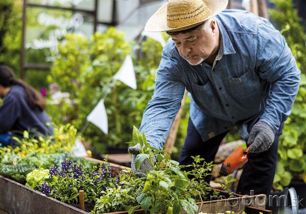 Záhradník je ten, ktorý