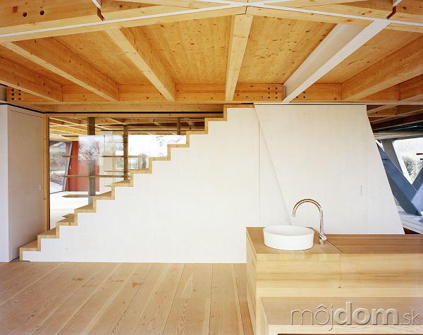 Atypická novostavba pretkaná drevenými