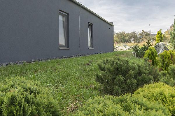 Dom kompletne bez dreva