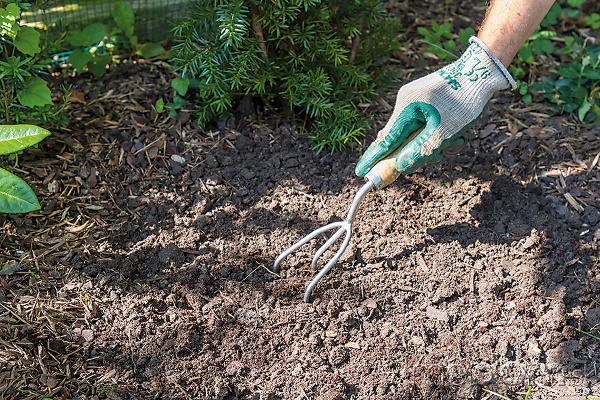 Rašelinu dôkladne premiešajte sčasťou