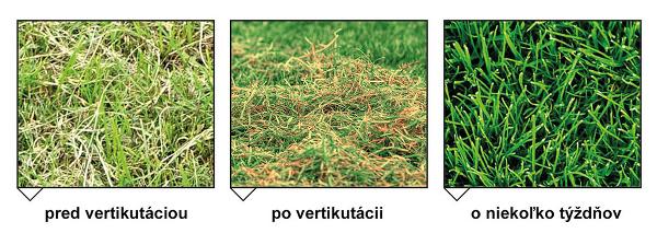 Rozdiel v kvalite trávnika