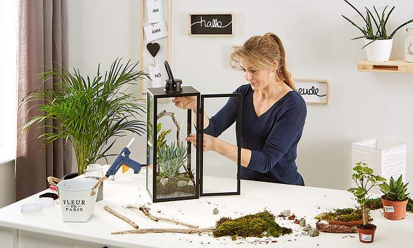 biolampáš s rastlinami a